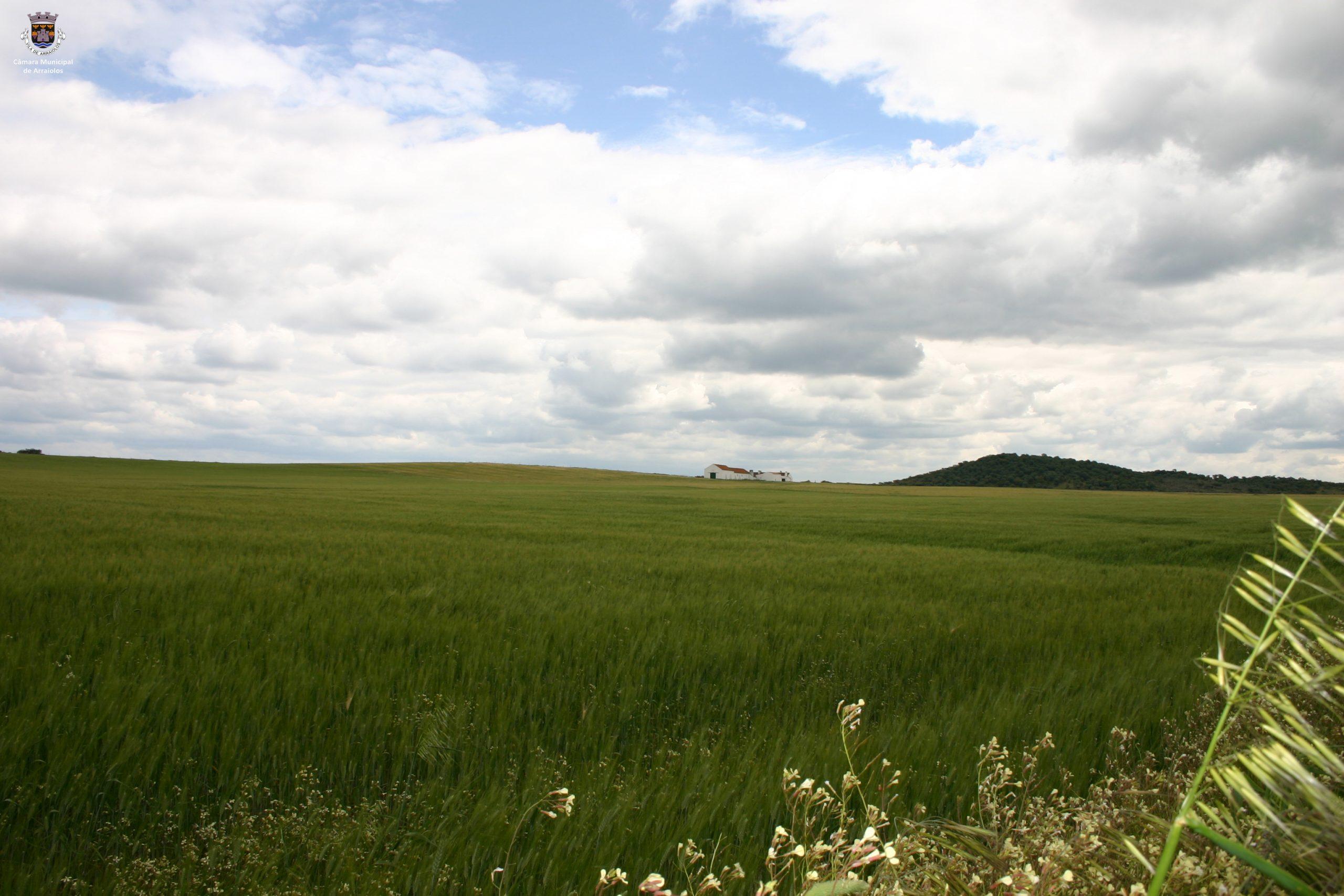Ecopista de Arraiolos
